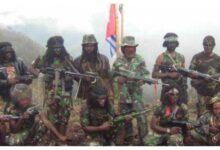 Photo of Mengutuk Kekejaman KKSB Papua